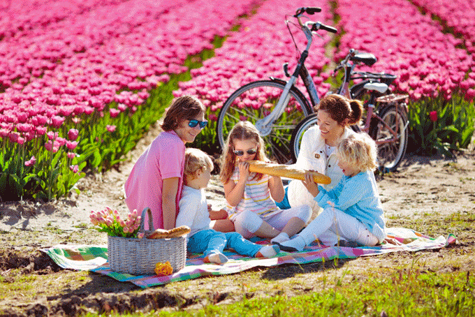Dieptepunt toerisme in Nederland: Kwart minder buitenlandse reizigers